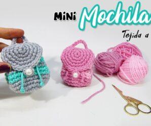Hermosas carteritas a Crochet paso a paso